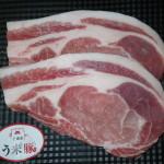 千歳産う米豚